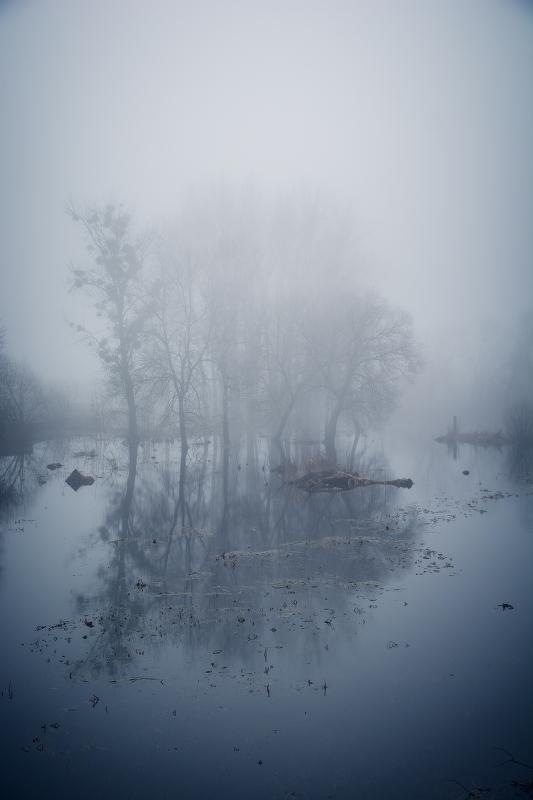 Мартовский туманный день